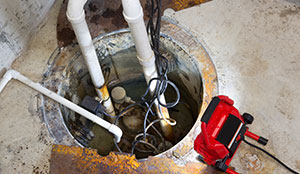 Crawlspace Water Remediation Services by Interstate Pest Management -Serving Portland - Vancouver - Longview - Kelso
