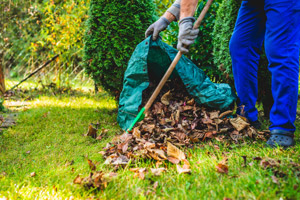 Man raking leaves outside. Interstate Pest Management serving Portland OR and Vancouver WA talks about wildlife prevention.